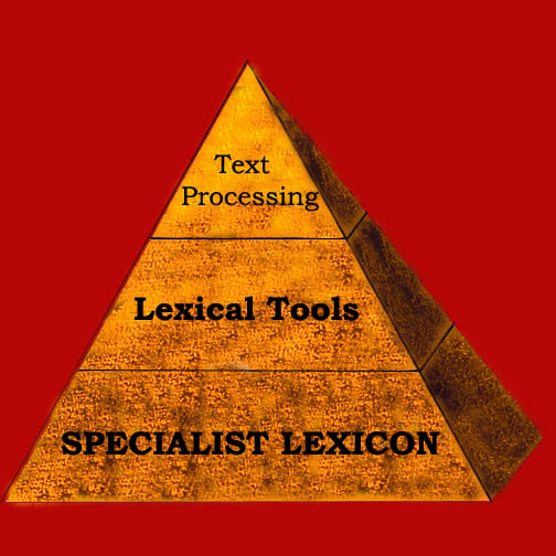 logo of Lexical Systems Group